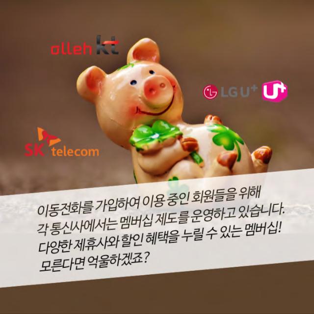 13탄 통신사멤버십_페이지_02.png