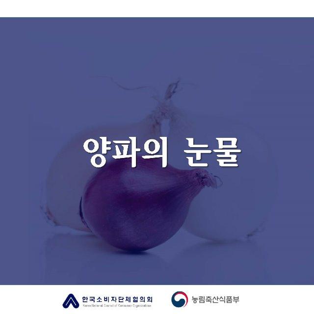 [카드뉴스]양파의눈물_페이지_1.jpg