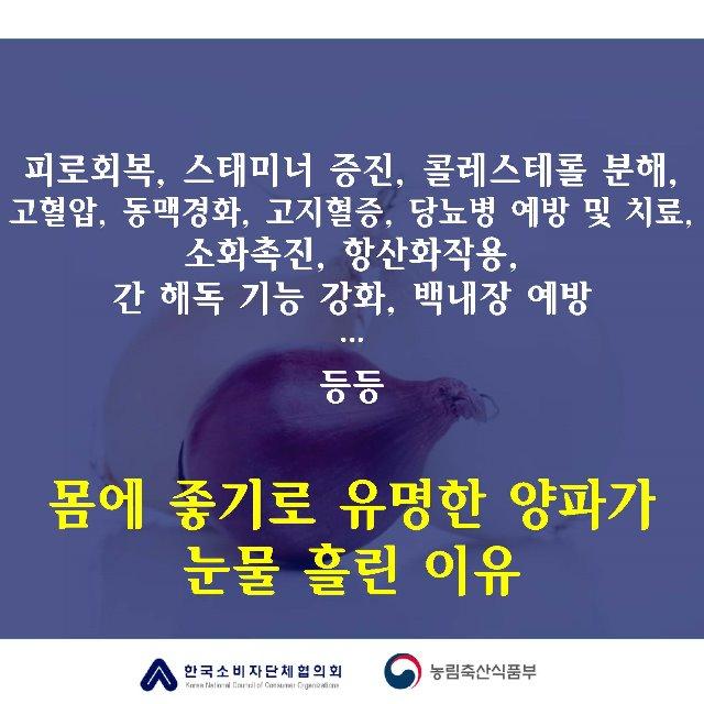 [카드뉴스]양파의눈물_페이지_2.jpg