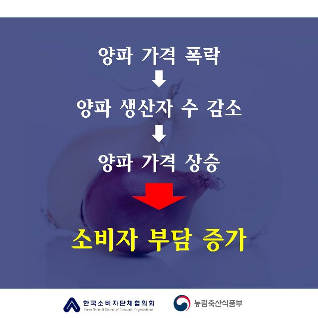 [카드뉴스]양파의눈물_페이지_5.jpg